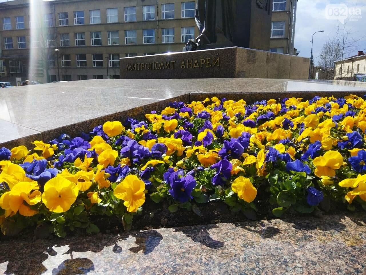 Висадили квіти біля пам'ятника Митрополиту Андрею, Фото: 032.ua