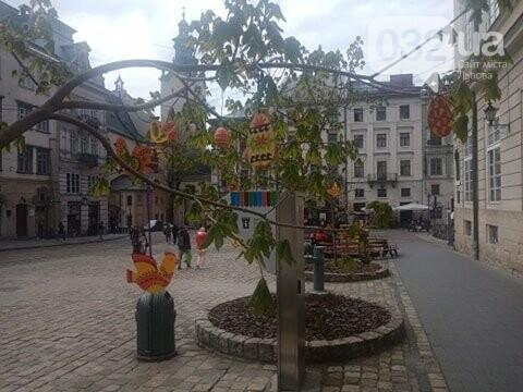Писанкові дерева на площі Ринок, Фото: 032.ua
