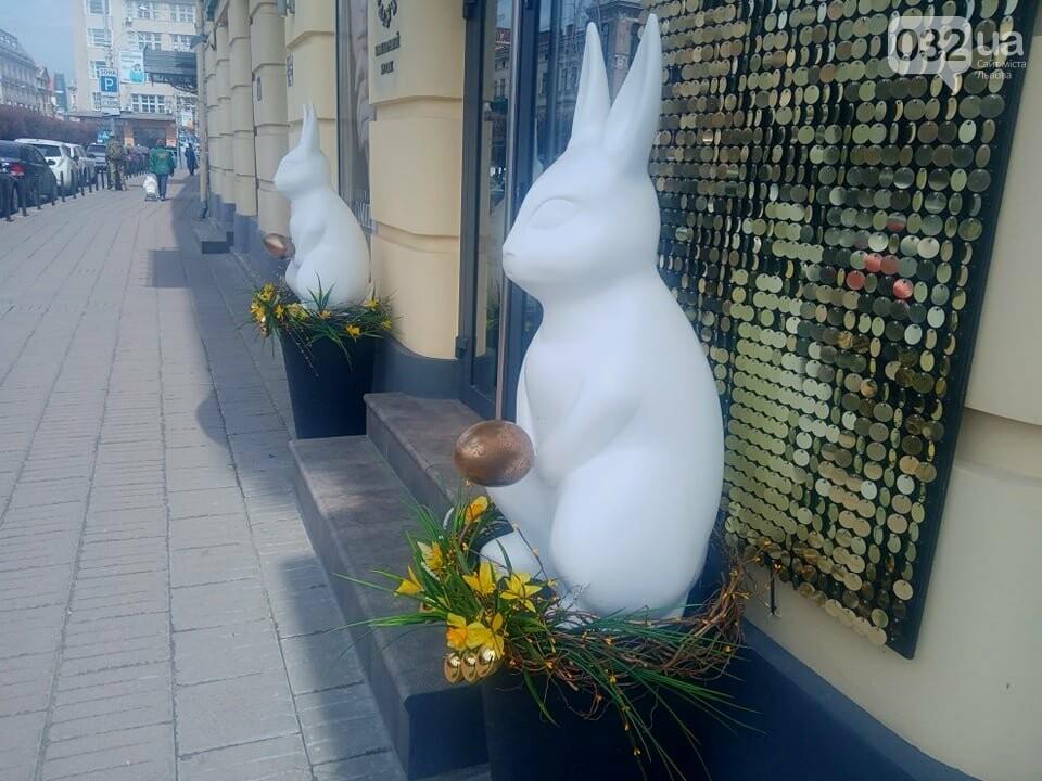 Кролики на проспекті Шевченка, Фото: 032.ua