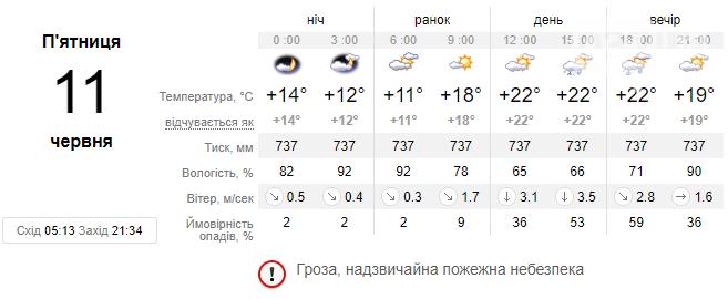 Погода у Львові на 11 червня: чи очікувати на завтра покращення умов, фото-3