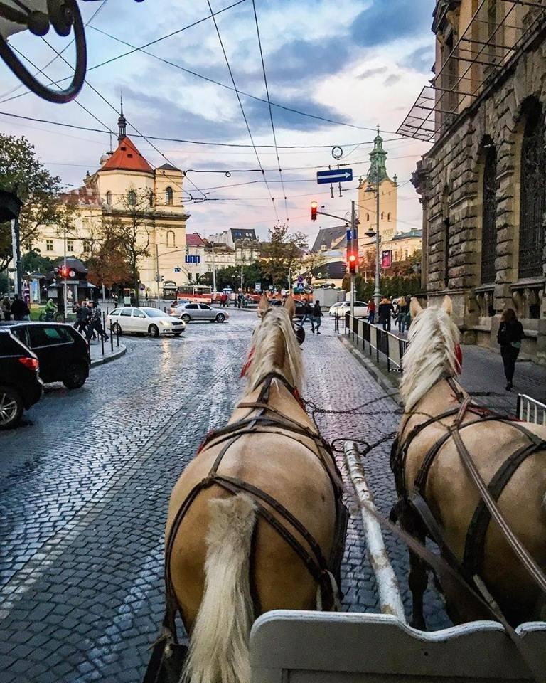 ТОП-6 ідей для романтичного побачення у Львові, фото-1, Фото: www.portal.lviv.ua