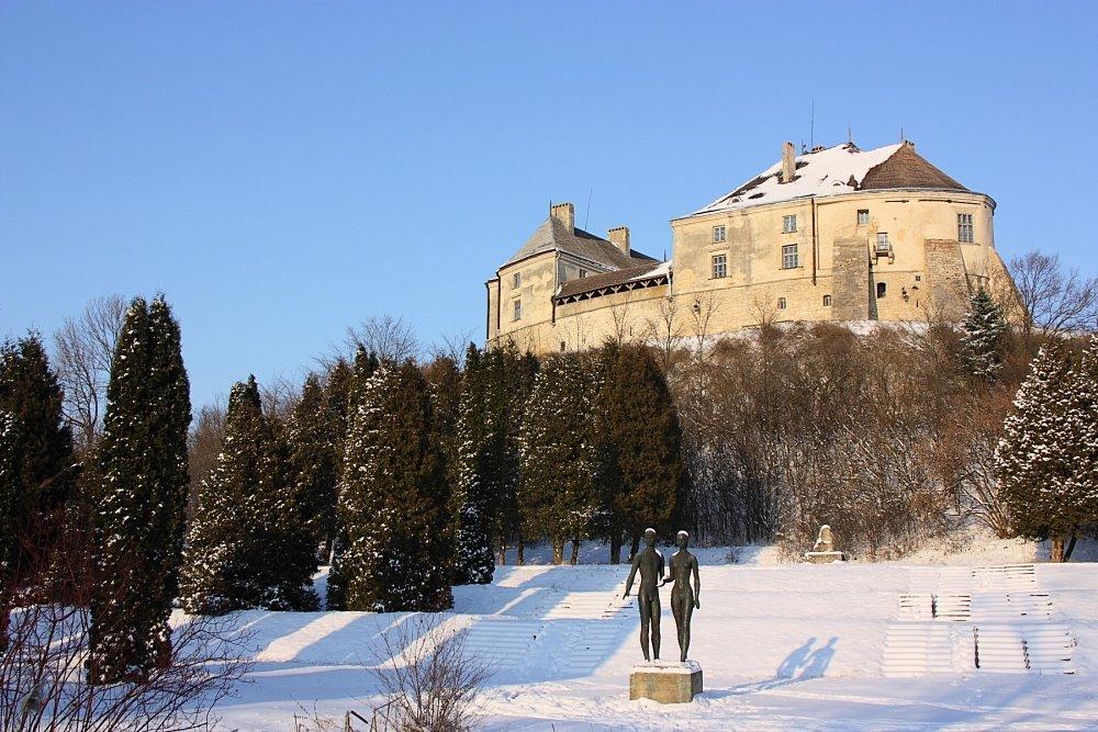 5 неймовірних замків в радіусі 100 кілометрів від Львова, куди варто поїхати взимку,- ФОТО, фото-3