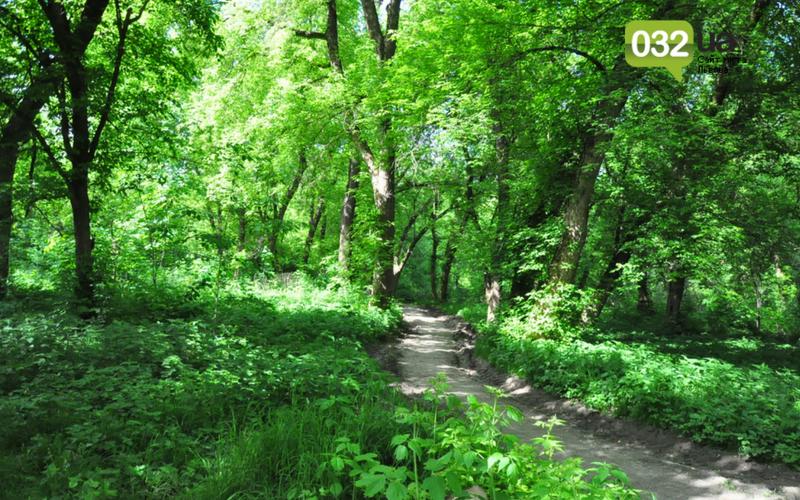 Як виглядає Замарстинівський парк у Львові: очікування - реальність, - ФОТО, фото-32