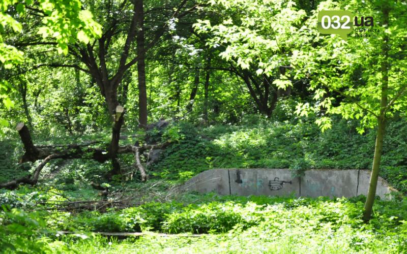 Як виглядає Замарстинівський парк у Львові: очікування - реальність, - ФОТО, фото-18