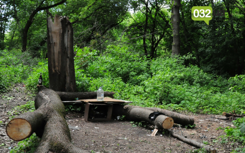 Як виглядає Замарстинівський парк у Львові: очікування - реальність, - ФОТО, фото-3