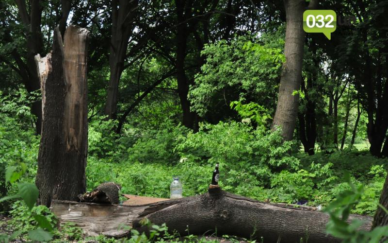 Як виглядає Замарстинівський парк у Львові: очікування - реальність, - ФОТО, фото-2