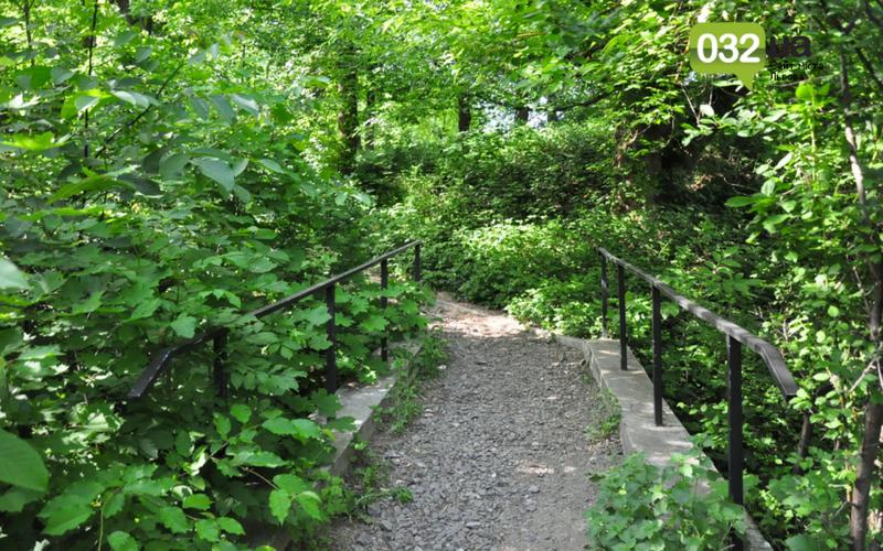 Як виглядає Замарстинівський парк у Львові: очікування - реальність, - ФОТО, фото-38