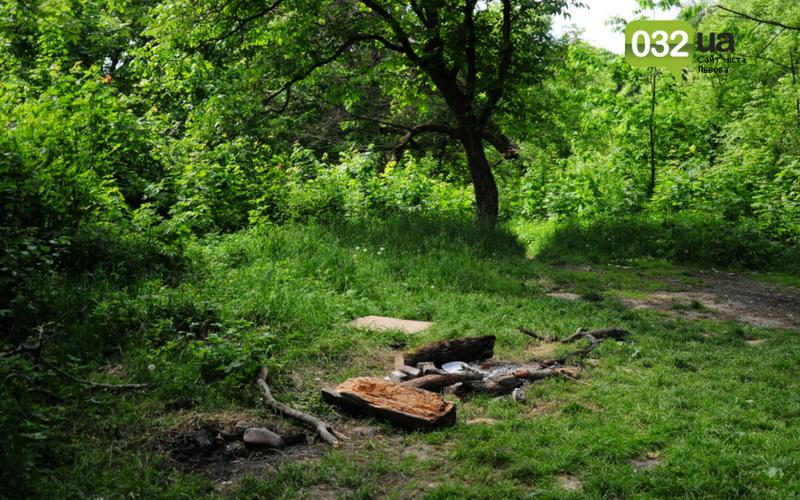 Як виглядає Замарстинівський парк у Львові: очікування - реальність, - ФОТО, фото-1