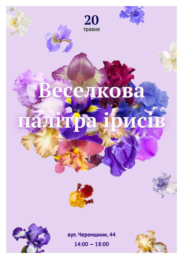 Львів'ян запрошують до ботанічного саду помилуватись ірисами , фото-1