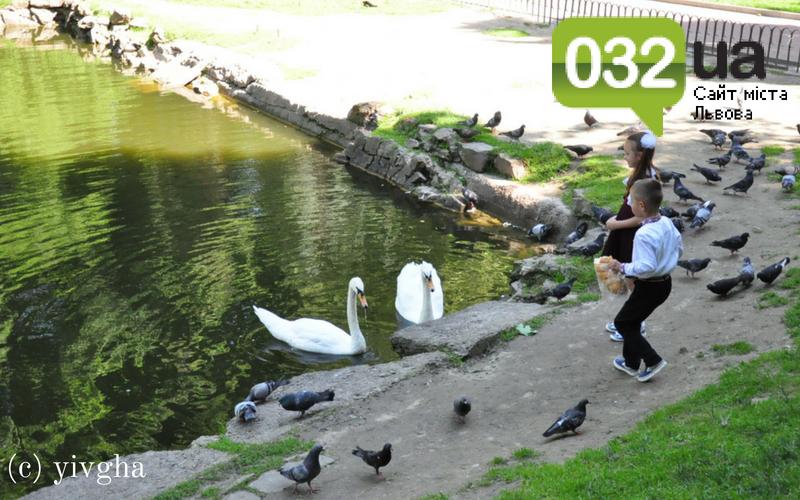 10 місць у Стрийському парку, які має побачити кожен, фото-3