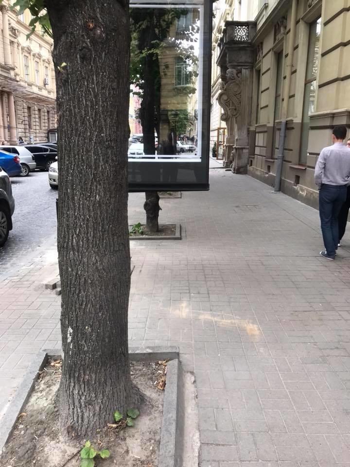 Фото: депутат Ігор Зінкевич/ Facebook.