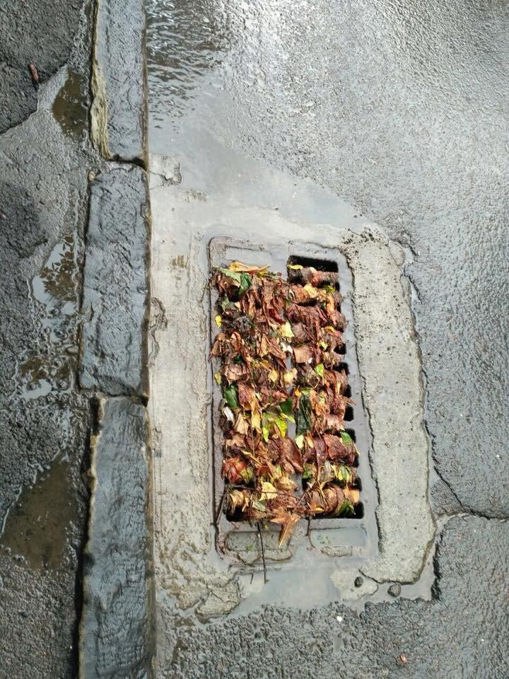 У Львові масштабна злива зупинила рух транспорту й затопила вулиці, - ФОТО, фото-39