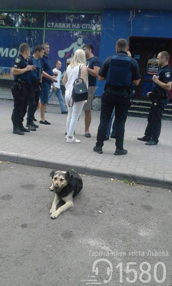 У Львові чоловік стріляв із травматичної зброї по автомобілю, - ФОТО, фото-3