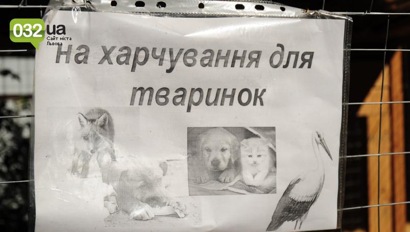 """Тварини із зоокутка в парку """"Знесіння"""" потребують допомоги львів'ян, - ФОТО, фото-17"""