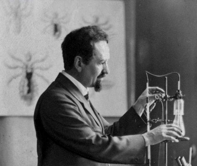 Рудольф Вайгль: творець вакцини проти висипного тифу, що врятував мільйони, фото-2