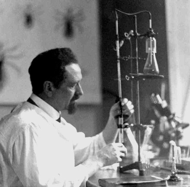 Рудольф Вайгль: творець вакцини проти висипного тифу, що врятував мільйони, фото-4