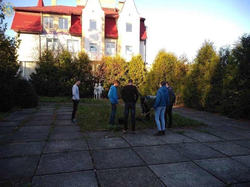 У Золочеві організували акцію «Посади дерево миру», фото-1