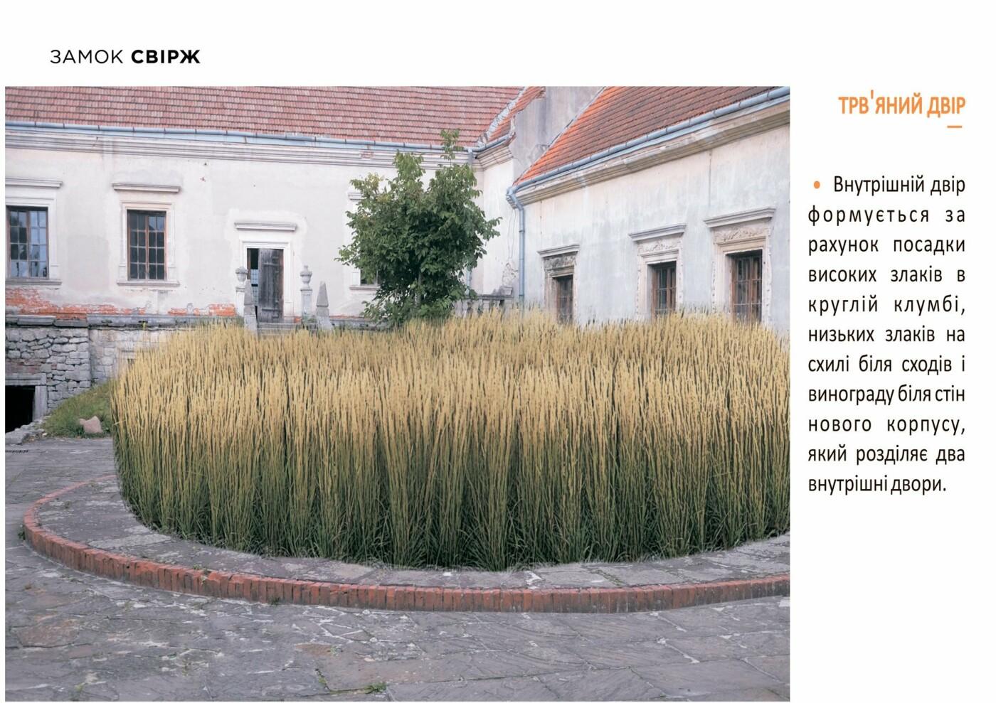 Свірзький замок: як планують ревіталізувати 500-річну пам'ятку, фото-4