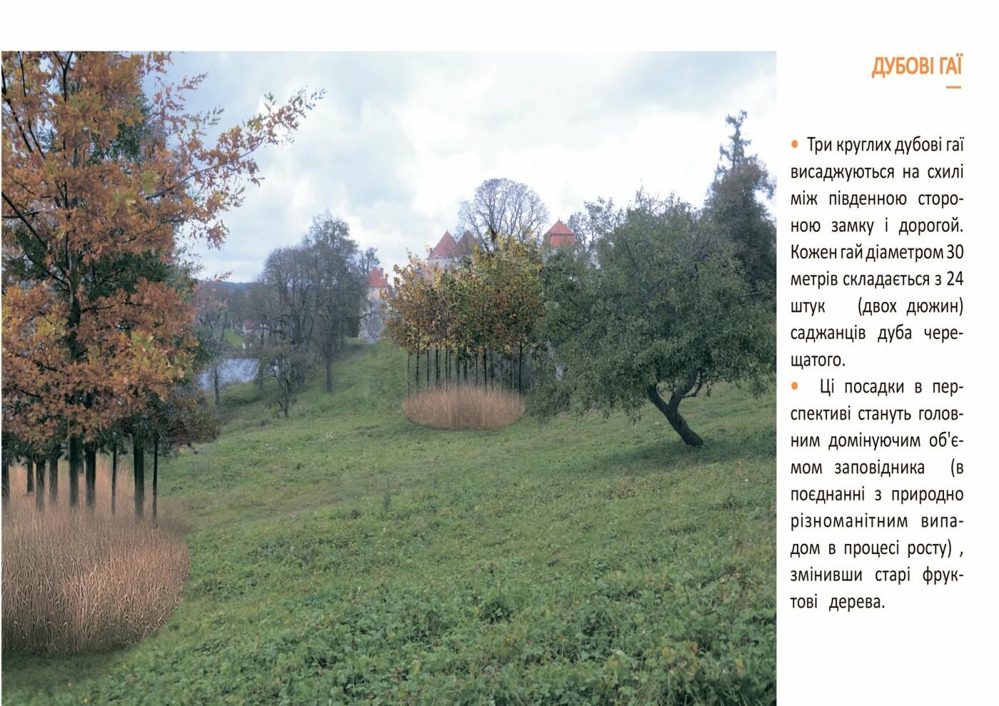 Свірзький замок: як планують ревіталізувати 500-річну пам'ятку, фото-5
