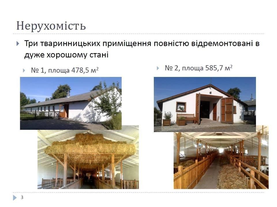 На Львівщині бельгієць продає відому козину ферму, фото-3
