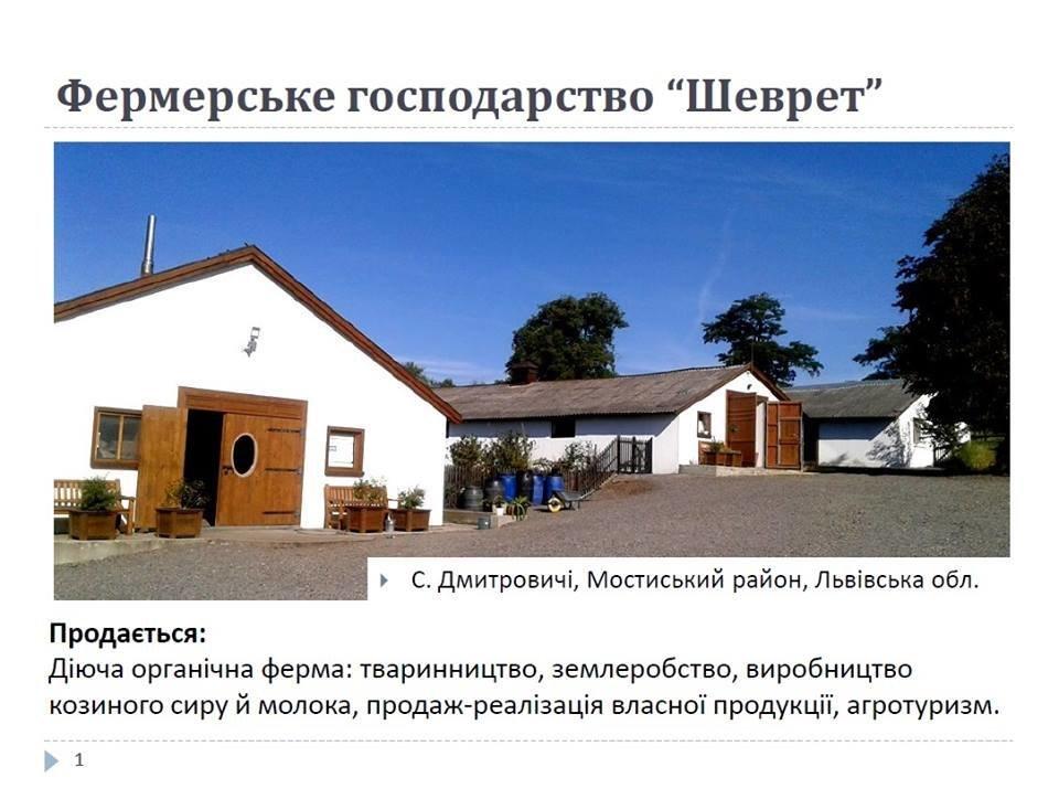 На Львівщині бельгієць продає відому козину ферму, фото-1