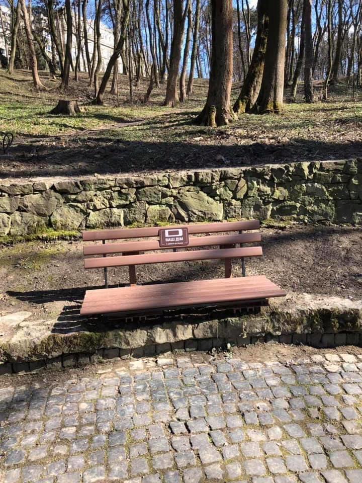 У Стрийському парку висадили 10 кущових магнолій, - ФОТО, фото-3, Фото: ЛМР