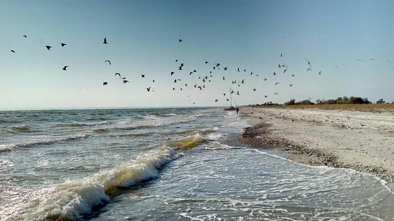 Відпочинок біля моря: як доїхати, де зупинитись і де поїсти львів'янам , фото-34