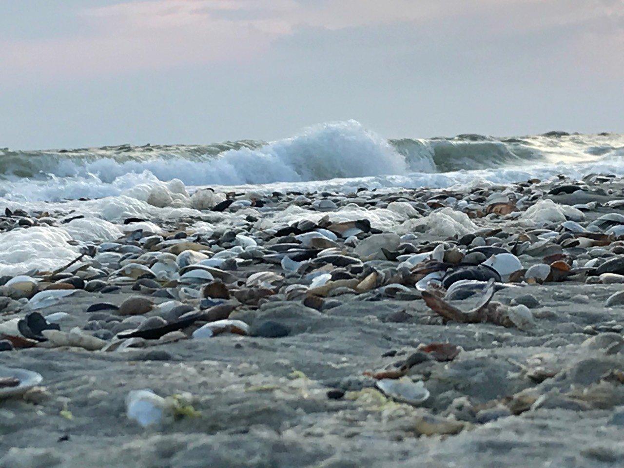 Відпочинок біля моря: як доїхати, де зупинитись і де поїсти львів'янам , фото-36