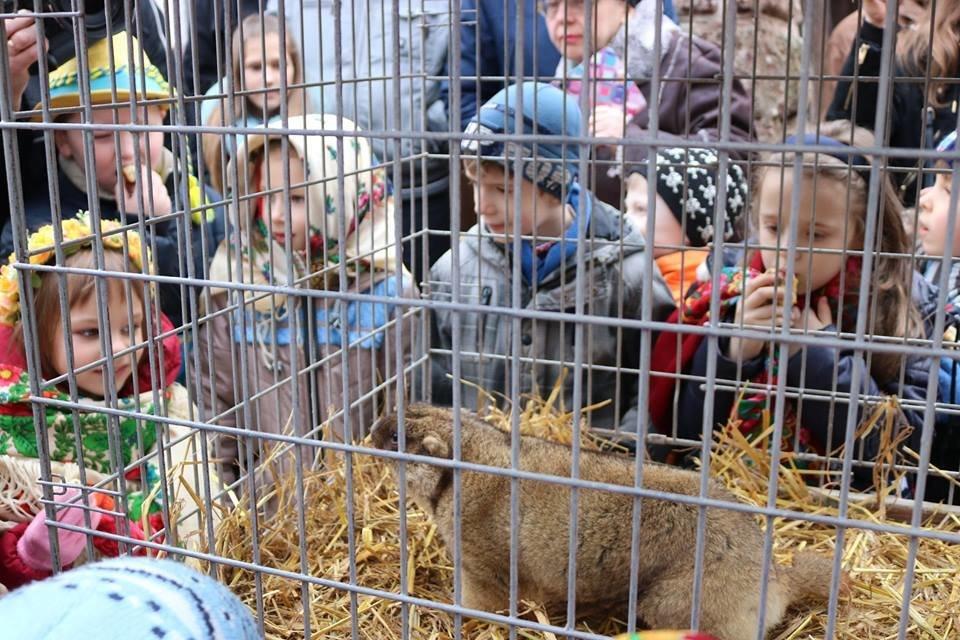 Їдемо відпочивати з дітьми: 8 цікавих місць у Львові і біля нього , фото-1