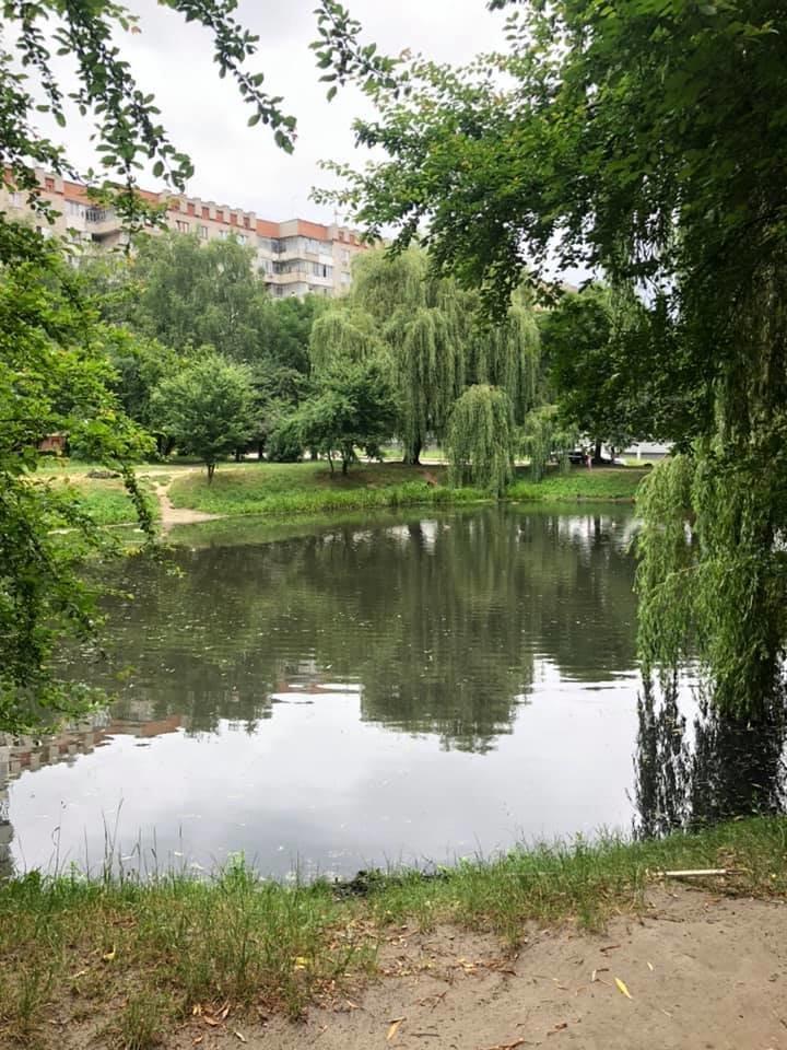 Озеро на Панча: як мешканці Львова змінюють простір довкола себе, фото-7
