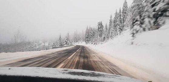 Липневий сніг в Карпатах вразив українців, - ФОТО, фото-2