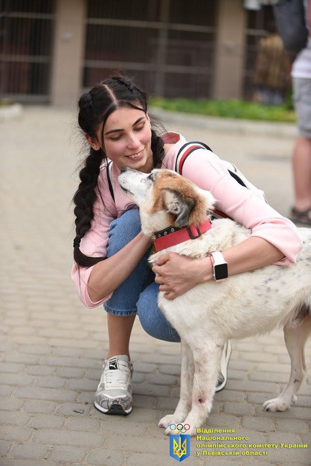 Як у Львові відомі спортсмени допомагали безпритульним тваринам, - ФОТО, фото-1