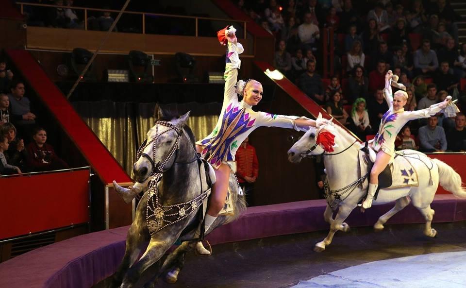 Фото: львівський цирк, фейсбук