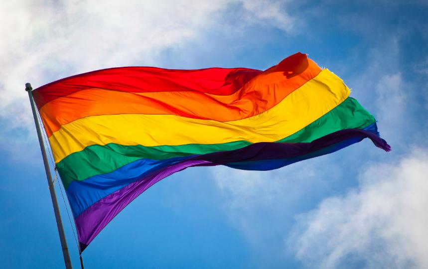Веселковий прапор та рожевий трикутник - найвпізнаваніші символи ЛГБТ-спільноти/ фото: Вікіпедія