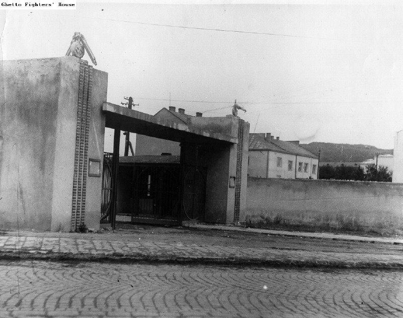 Янівський концтабір