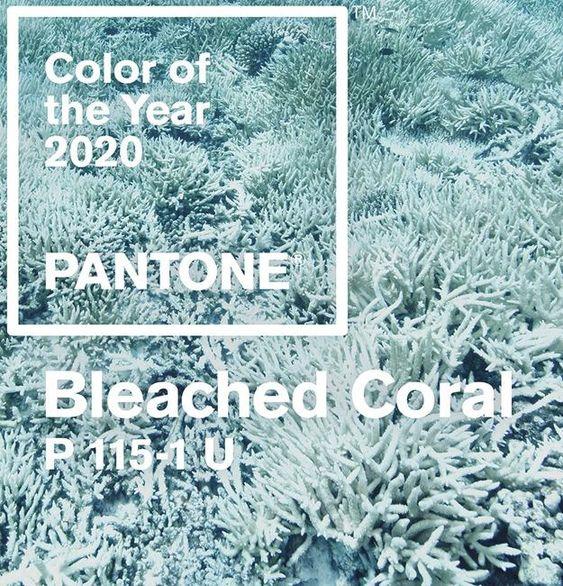 Фото: модний колір 2020 Bleached Coral