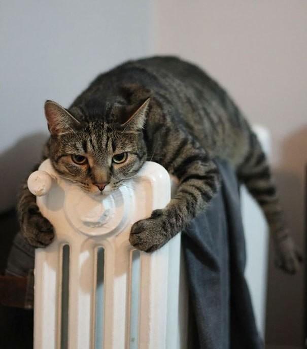 Самостійно регулювати тепло вдома Львів взимку