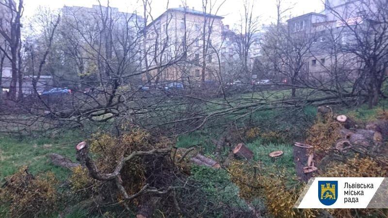 Фото: сквер на Горбачевського / Львівська міська рада