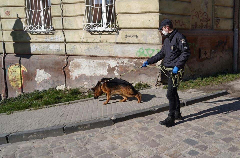 Фото: поліція працює на місці події / прессслужба поліції Львівщини
