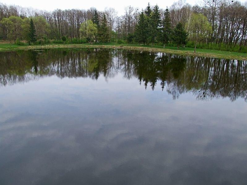 Шкло, фото: Вікіпедія, kurortnyy.com
