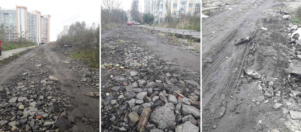 Дорога на вулиці Величковського, Фото з петиції