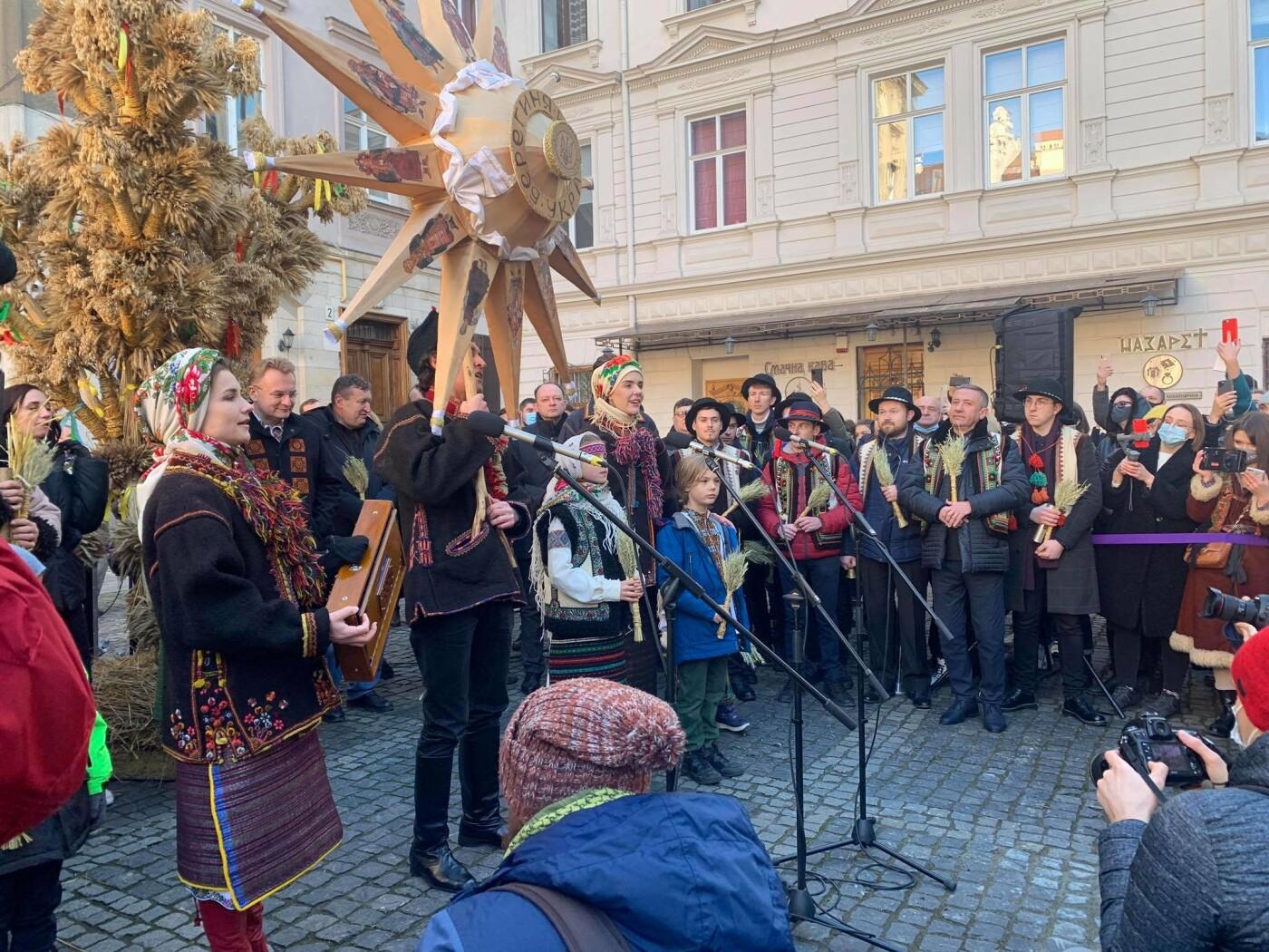 Як у Львові встановлювали різдвяного дідуха, Фото - 032.ua