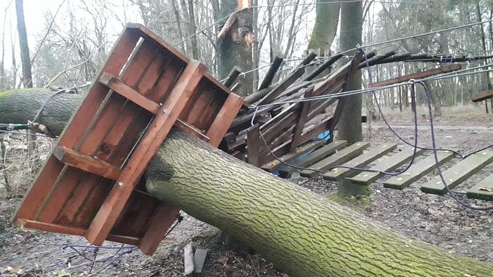 Буревій пошкодив лазанку, Фото: Facebook/Парк культури