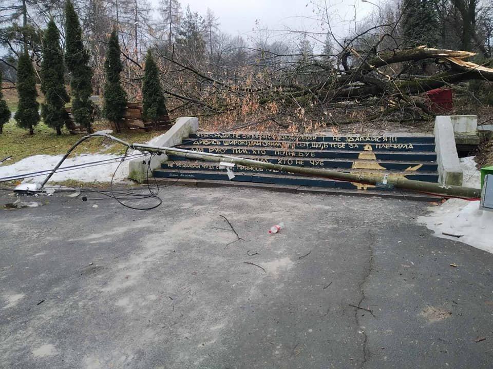 Сильний вітер повалив дерева