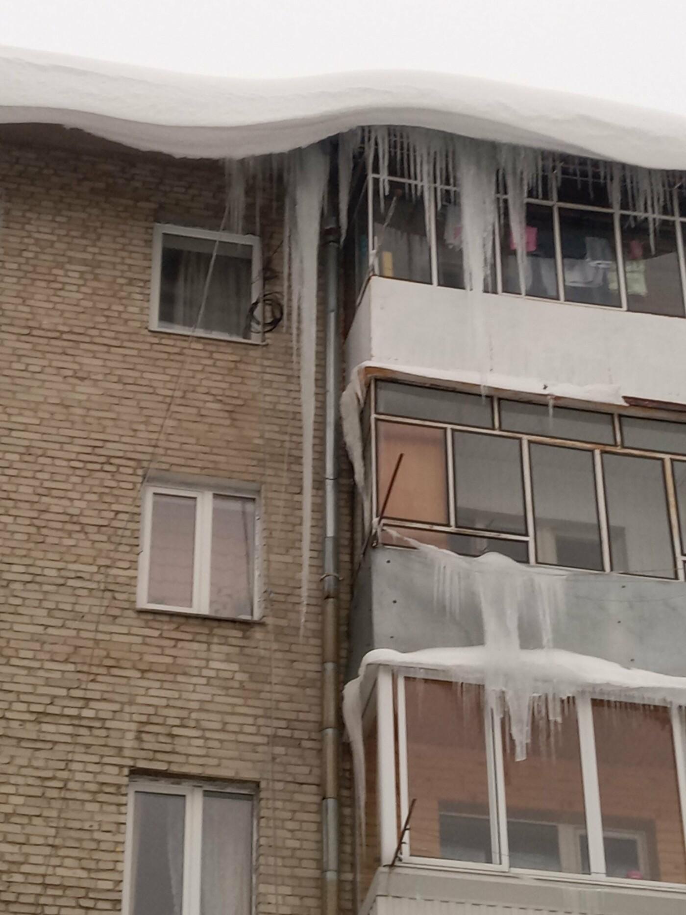 """Бурулі на вулиці Єрошенка у Львові, Фото - """"Варта - 1"""""""