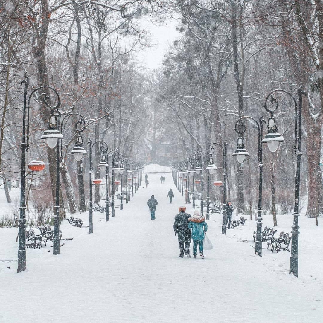 Головна алея у парку ім. І. Франка, Фото: reallviv