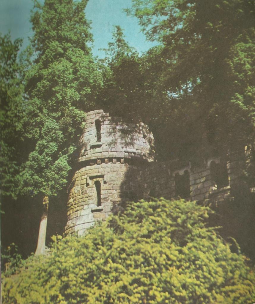 Стрийський парк. Штучні замкові руїни, Фото: photo-lviv.in.ua