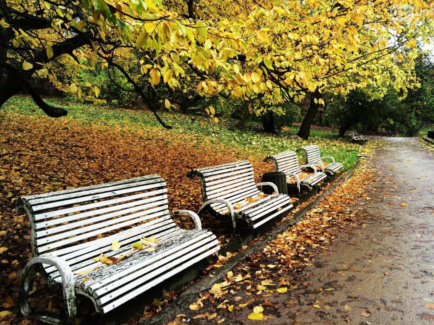 Стрийський парк у Львові, Фото: 032.ua