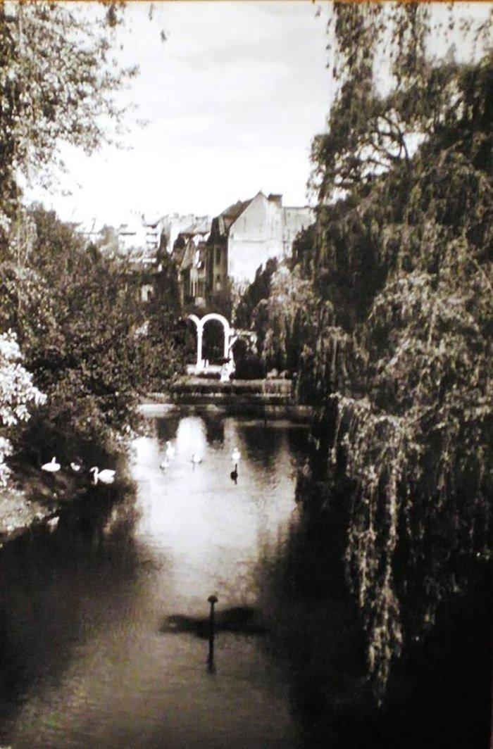 Стрийський парк, Фото: photo-lviv.in.ua