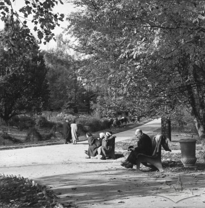 Куточок львівського парку, Фото: uma.lvivcenter.org
